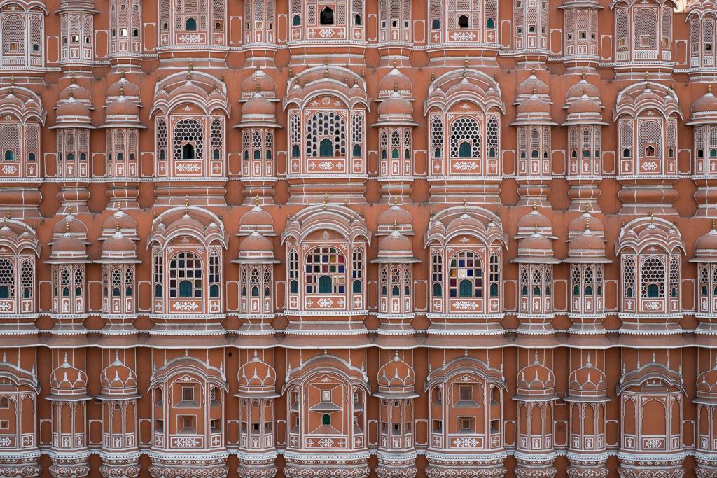 Rose Jaipur