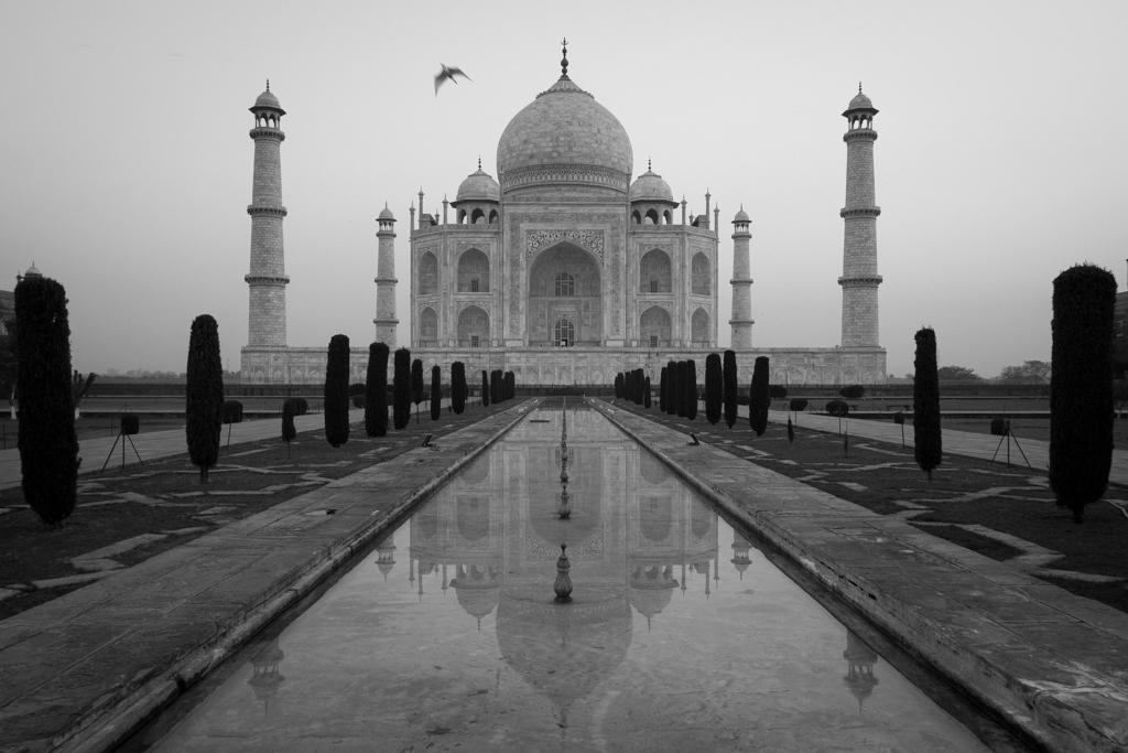 Taj Mahal à l'aube