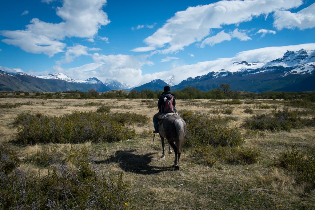 Estancia Nibepo Aike cheval