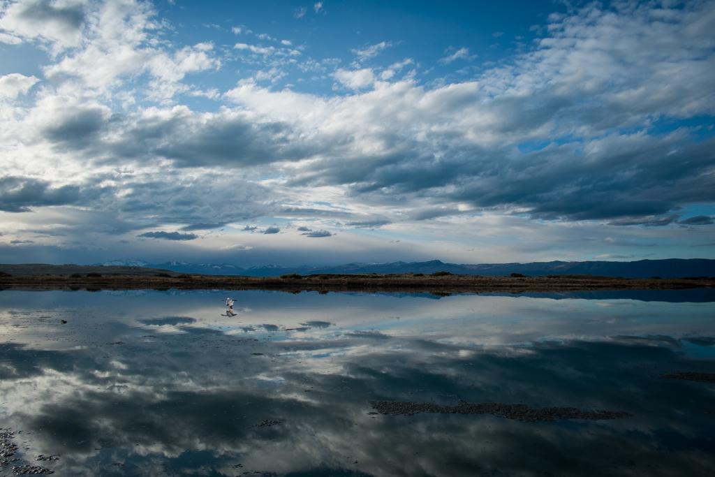 Laguna Nimez reflets