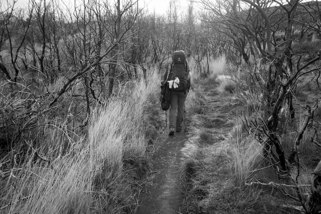 Yolande Tiffany chemin Torres del Paine