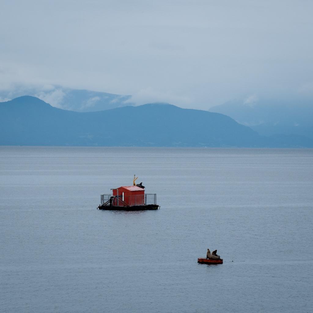 Arrivée Puerto Montt