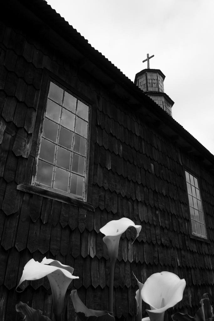 Chiloé église-fleurs